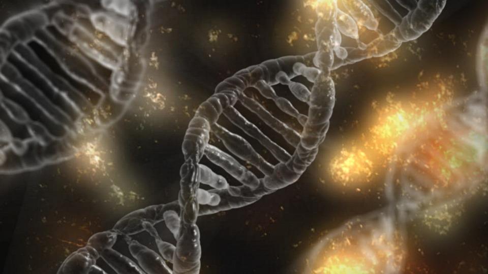 {mlang it}Pillole di Biochimica{mlang}{mlang en}Biochemical pills{mlang}{mlang es}Pastillas bioquimicas{mlang}