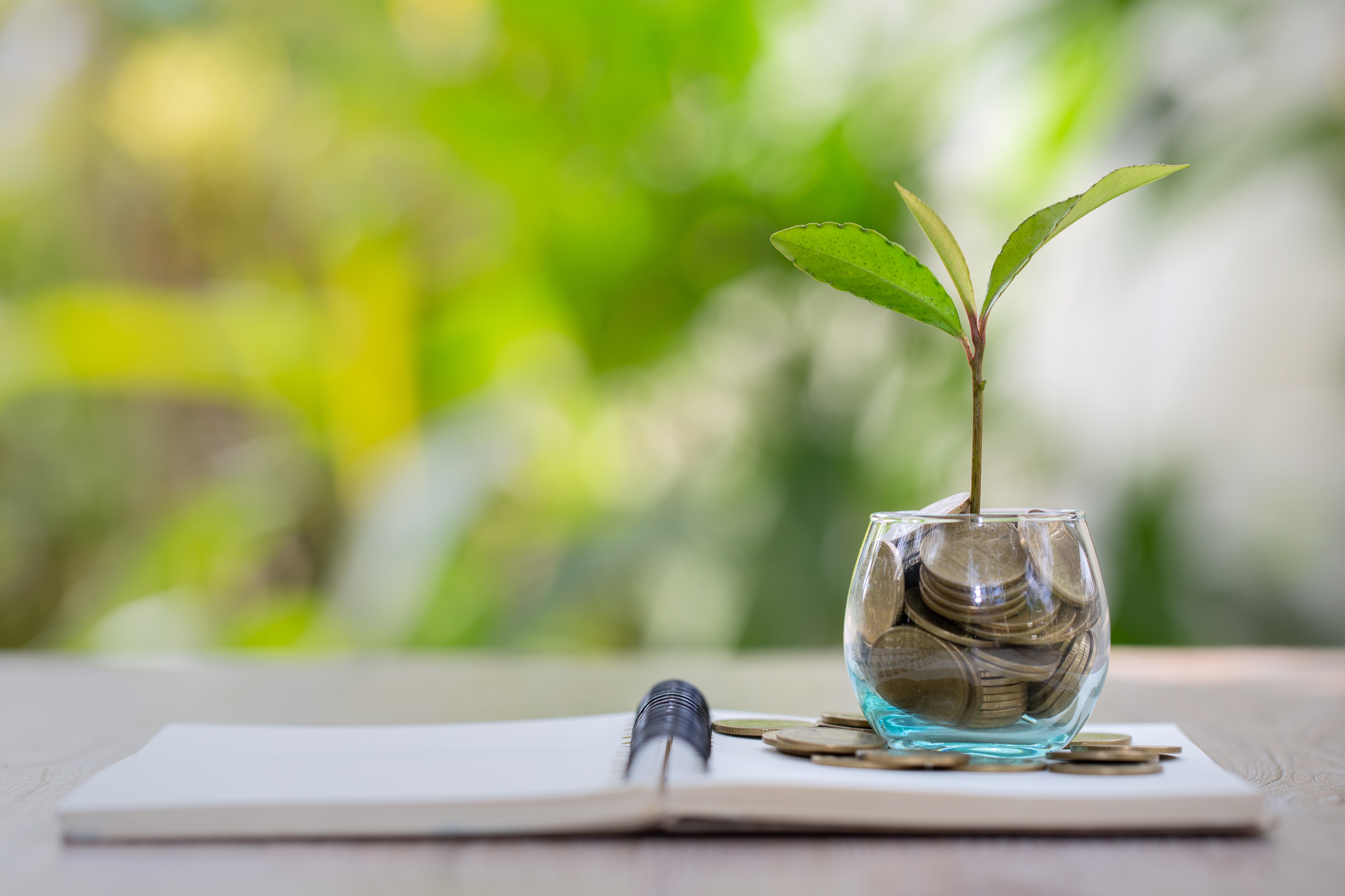 Introduction to Sustainability, Sustainable Finance and the role of Law