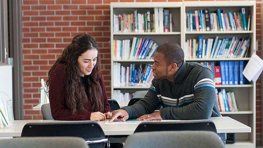 Counselling e accompagnamento per l'individuazione delle competenze