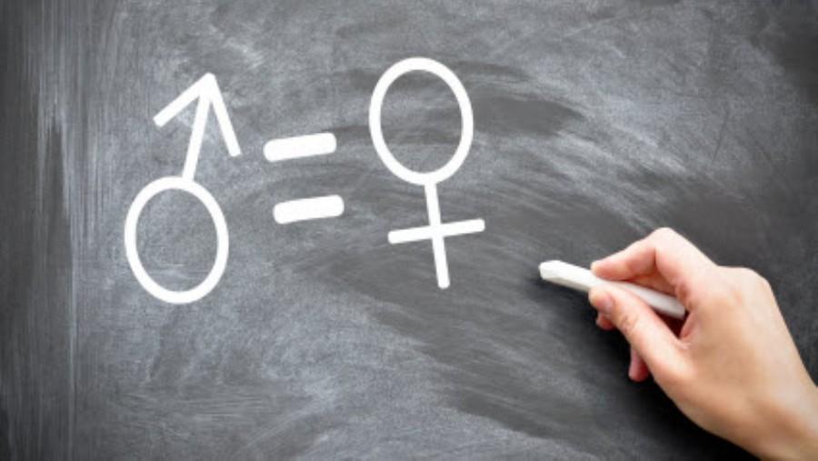 Linguaggio, identità di genere e lingua italiana