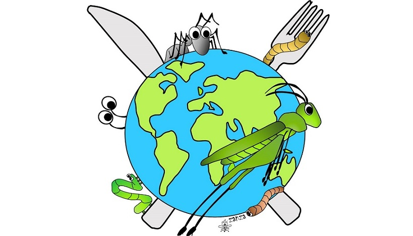 Edible insects: biology and traditions